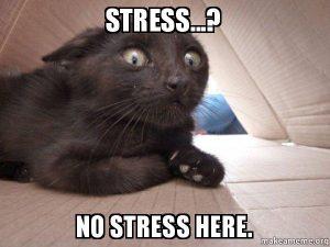 Stress?  No Stress Here.