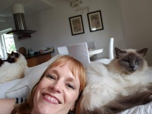 Austrian Airbnb with beautiful cats
