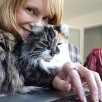 Peace and gratitude for cats and housesitting in the uncertainty of covid virus