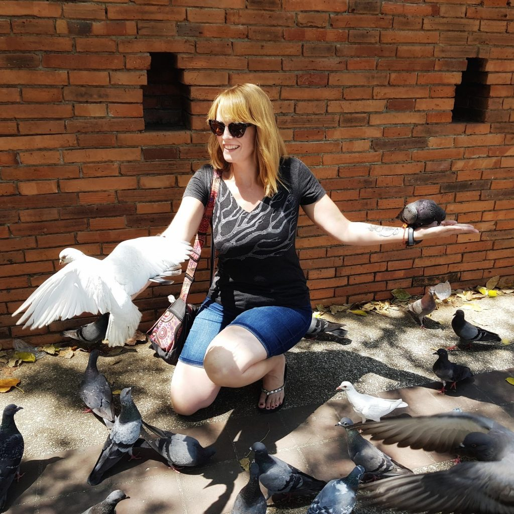 Pigeons flying free - feeding birds in Chiang Mai Thailand